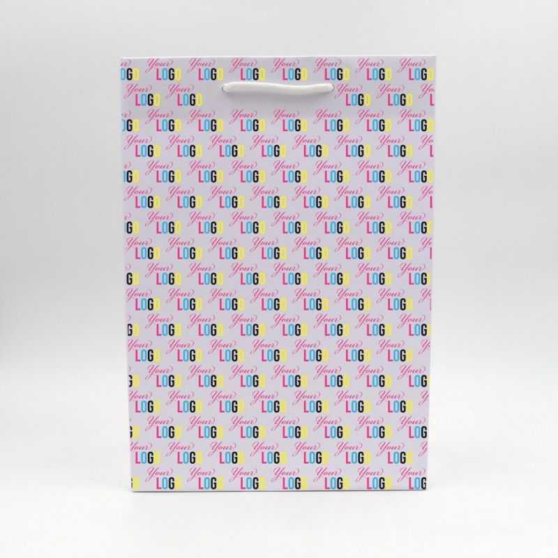 Lesse Paper Bag Offset Print On