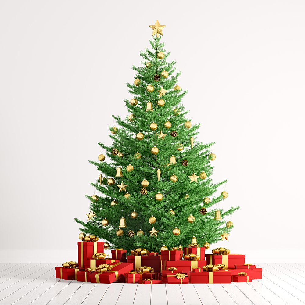 Green Christmas tree with red gifts Christmas colors